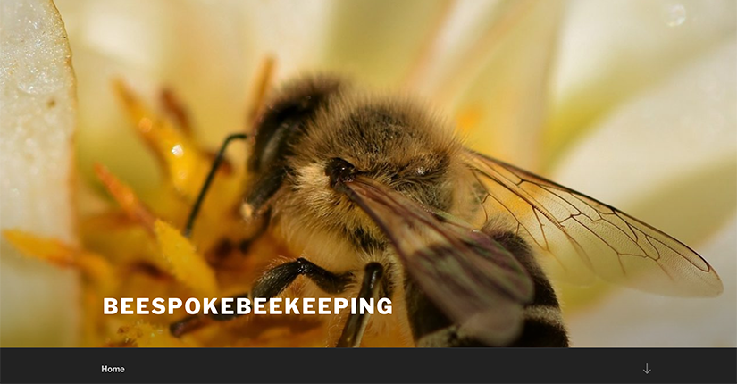 Beespokebeekeeping - Bee products, education and services site